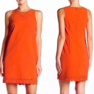 NEW J Crew Orange Laser Cut Scallop Shift Dress 14